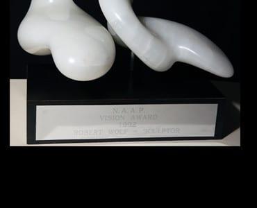 Vision Award at NAAP